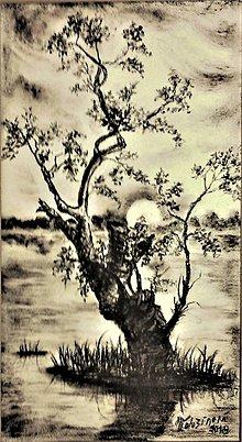 Kresby - Leto pri vode l - 9846701_
