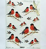 - Ryžový papier na decoupage -A4-R590 - vtáčiky, sýkorky, zima - 9849426_