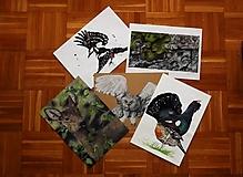 Kresby - Kresby, ilustrácie a maľby zvierat - formát A4 - 9849045_