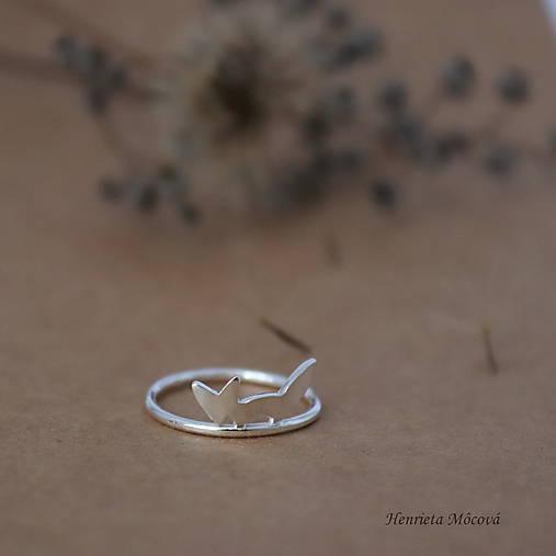 minimalistický strieborný prsteň CUTE WILDNESS