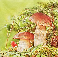 Papier - S1238 - Servítky - huby, hríby, dubák, les, ihličie, šiška, jeseň - 9855710_