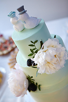 Dekorácie - Elegantné vtáčiky - figúrky na svadobnú tortu - 9855585_