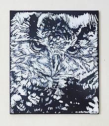 Obrazy - Black n white Owl - 9859930_