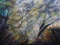 Obrazy - Zátišie hlboko v lese - 9864356_