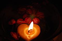 Svietidlá a sviečky - Plávajúce srdiečka - 9875450_