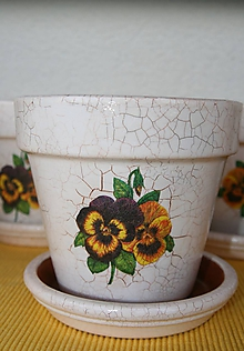 Nádoby - Kvetináč so sirôtkami - 9881486_