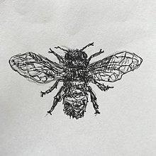 Kresby - Včela - 9882451_