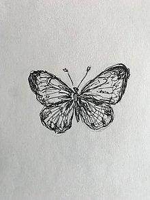 Kresby - Motýľ - 9882563_