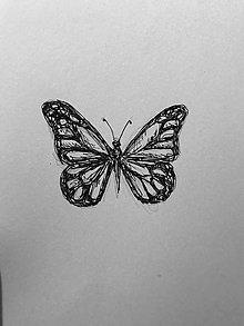 Kresby - Motýlik - 9882742_