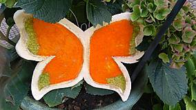 Socha - Motýlik - 9893267_