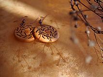 Náušnice - •z čerešňovej halúzky• - 9900244_