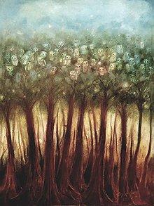 Obrazy - Múdrosť sa skrýva v lese - 9901555_