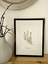 Kresby - Obrázok akvarel - materina dúška - 9901067_
