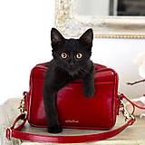 Kabelky - Kožená kabelka/ľadvinka MARIMA z pravej kože - červená - 9902397_