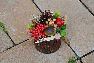 Dekorácie - Jesenná dekorácia s hríbom a jablkom v kôre - 9906389_