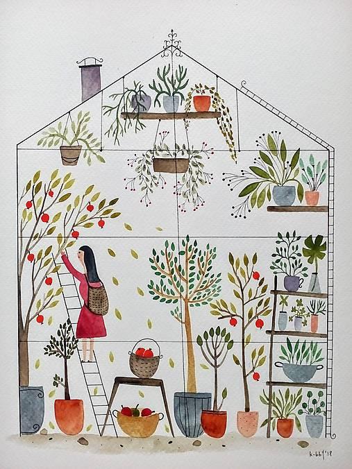 Jablkovy sklenik ilustrácia / originál maľba