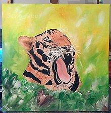 Obrazy - Tiger - 9918035_