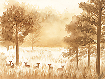 - Jesenné ráno v lese // In the morning - 9922305_