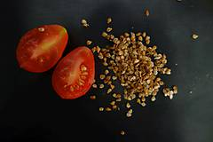 Potraviny - domáce semienka rajčín- červené hruštičky 2018- ZĽAVA - 9927101_
