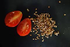 Potraviny - domáce semienka rajčín- červené hruštičky - 9927109_