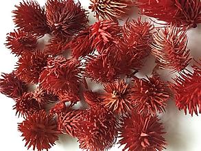Suroviny - Farbený bodliak - červený - 9938791_