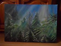 Obrazy - Čas stromov - 9956732_