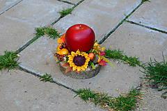 - Jesenné jabĺčko na dreve - 9956915_
