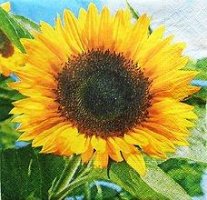 Papier - S1281 - Servítky - leto, slnečnica, slnko, pole, kvety - 9959480_