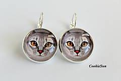 - Cats... (Náušnice 20mm) - 9966575_