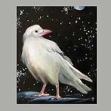 Obrazy - Jsem bílá vrána...ergo sum! - olejomalba na plátně - 9963826_