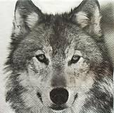 - S1295 - Servítky - vlk, wolf, gray wolf, polárny, zima - 9971006_