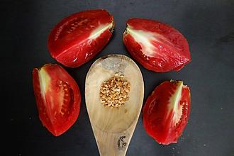 Potraviny - domáce semienka mäsitých rajčín 2019 - 9973495_