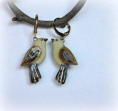 Náušnice - keramické náušnice  - vtáčiky - 9976713_