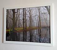 Obrázky - Obrázok na stenu 43x33 cm - 9979573_