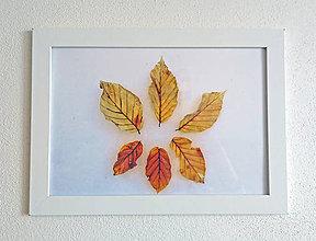 Obrázky - Obrázok na stenu 33x24 cm (Jeseň v zime) - 9979402_
