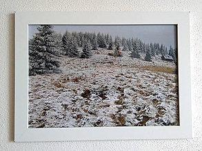 Obrázky - Obrázok na stenu 33x24 cm (Novembrová lúka) - 9979431_