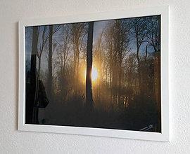 Obrázky - Obrázok na stenu 43x33 cm (Hmlistý lesný sen) - 9979561_