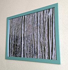 Obrázky - Obrázok na stenu 43x33 cm (Zimný les) - 9979619_