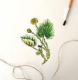 Kresby - Podbeľ vo farbách - 9978597_