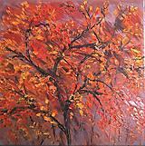 Obrazy - Jesenné nokturno - 9990647_