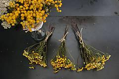 vratič obyčajný- kytička pre aranžérov