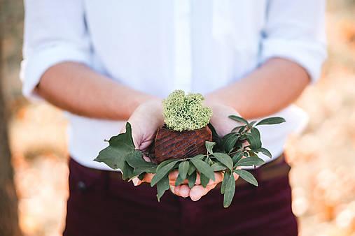 Nádoby - Drevený kvetináč - Sinus - 9991360_
