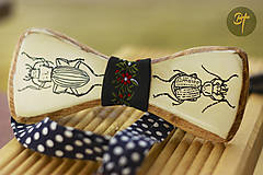 Drevený motýlik - Carabidae