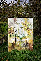 Obrazy - V lese-z etapy kraje a ich premena-Leto - 10001475_