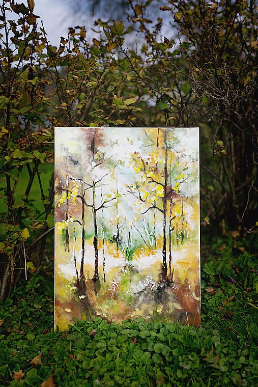 V lese-z etapy kraje a ich premena-Leto