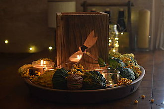 Svietidlá a sviečky - Lampáš - vážka - 10006290_