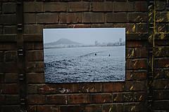 Fotografie - Obraz VITAMIN SEA - 10005919_