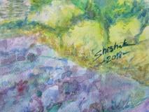 Obrazy - Provensálsko / Lavender Field - Originál - 10008546_