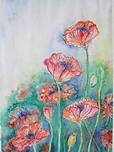 Obrazy - Maky I. / Poppies I. - Originál - 10009938_