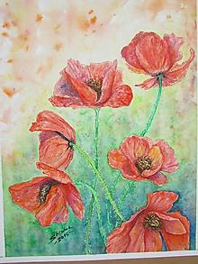Obrazy - Maky II. / Poppies II. - Originál - 10010015_
